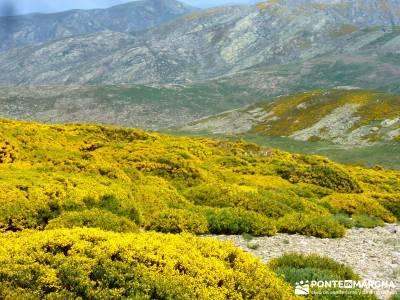El Morezón - Sierra de Gredos; amigos madrid; fedme; senda del oso;videosenderismo